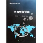全面预算管理/大财务理论与实践系列丛书