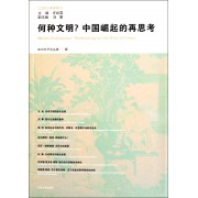 何种文明中国崛起的再思考/知识分子论丛