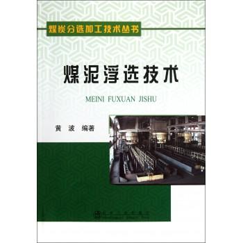煤泥浮选技术/煤炭分选加工技术丛书