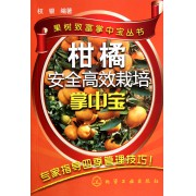 柑橘安全高效栽培掌中宝/果树致富掌中宝丛书