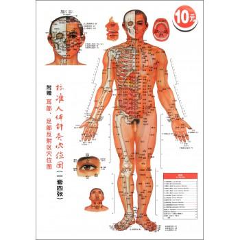 标准人体针灸穴位图(共4张)