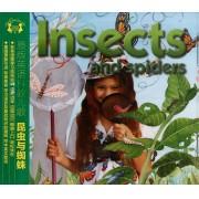 CD原版英语科教儿歌(昆虫与蜘蛛)
