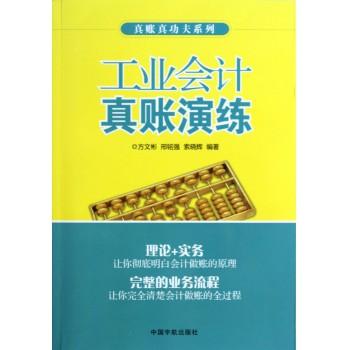 工业会计真账演练/真账真功夫系列