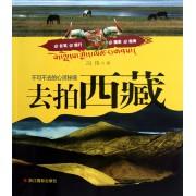 去拍西藏(不可不去的心灵秘境)