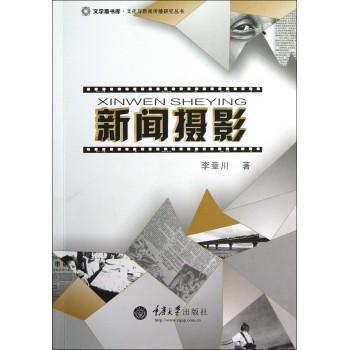 新闻摄影/文化与新闻传播研究丛书/文字斋书库