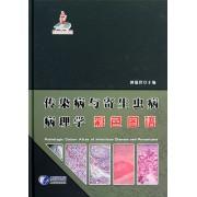传染病与寄生虫病病理学彩色图谱(精)