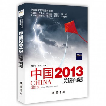 中国2013(关键问题)
