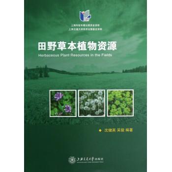 田野草本植物资源