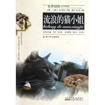 流浪的猫小姐/世界动物文学经典