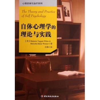 自体心理学的理论与实践/心理咨询与治疗系列