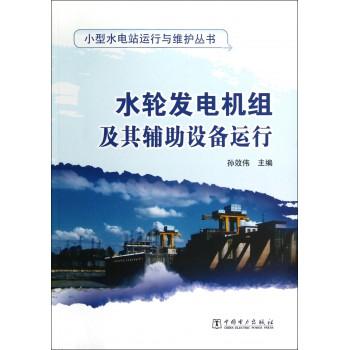 水轮发电机组及其辅助设备运行/小型水电站运行与维护丛书