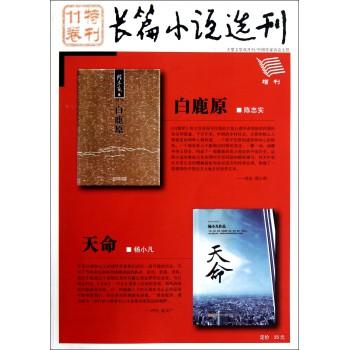 长篇小说选刊(特刊11卷增刊)