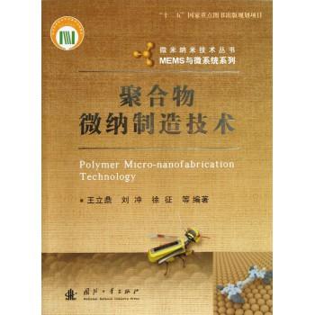 聚合物微纳制造技术/MEMS与微系统系列/微米纳米技术丛书