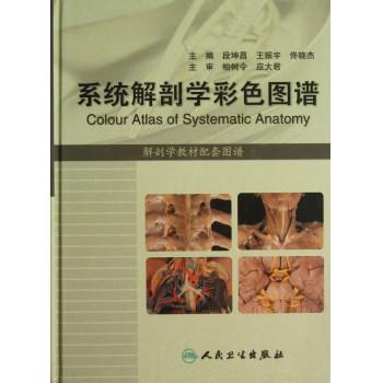 系统解剖学彩色图谱(解剖学教材配套图谱)(精)