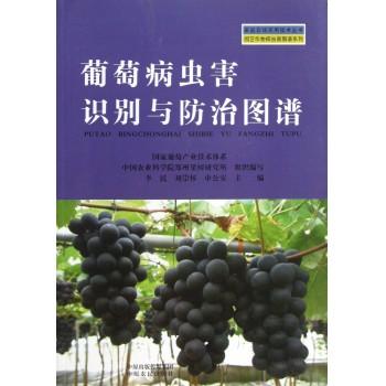 葡萄病虫害识别与防治图谱/园艺作物病虫害图谱系列/家庭农场实用技术丛书