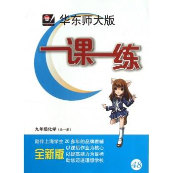 九年级化学(全1册全新版)/华东师大版一课一练