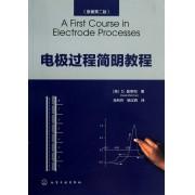 电极过程简明教程(原著第2版)