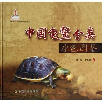中国龟鳖分类原色图鉴(精)/现代农业科技专*大系