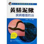 黄鳝泥鳅疾病看图防治/水产养殖看图治病丛书