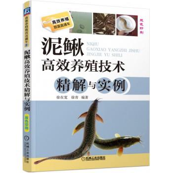 泥鳅高效养殖技术精解与实例(双色印刷)/高效养殖致富直通车
