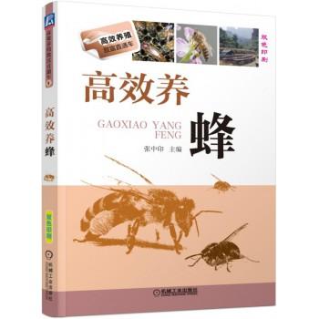 高效养蜂(双色印刷)/高效养殖致富直通车