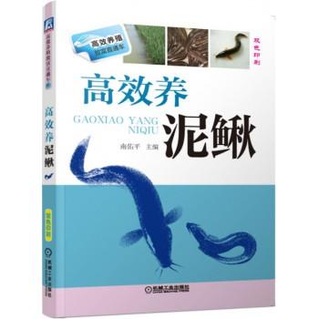 高效养泥鳅(双色印刷)/高效养殖致富直通车