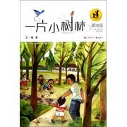 一片小树林/漂流屋王一梅儿童文学精品系列