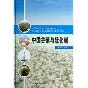 中国芒硝与硫化碱(精)