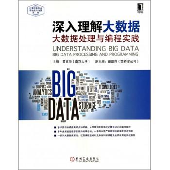 深入理解大数据(大数据处理与编程实践)/计算机类专业系统能力培养系列
