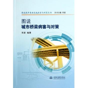 图说城市桥梁病害与对策/图说城市基础设施病害与对策丛书