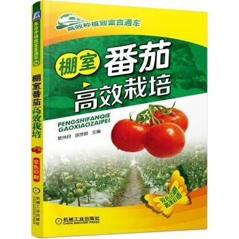 棚室番茄高效栽培(双色印刷)/高效种植致富直通车