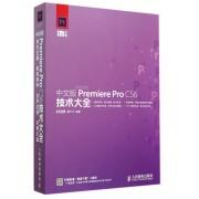 中文版Premiere Pro CS6技术大全