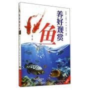 养好观赏鱼(第2版)