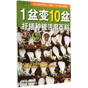 1盆变10盆(扦插种植活用百科)