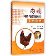 肉鸡饲养与疫病防控实用技术