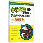 中华土元<地鳖虫>高效养殖与加工利用一学就会/饲药用动植物丛书