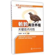 鹌鹑高效养殖关键技术问答/经济动物高效养殖技术问答系列