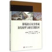 崩塌滚石灾害形成演化机理与减灾关键技术(精)