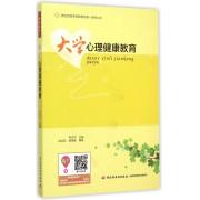 大学心理健康教育/体验式团体教育模式第一系列丛书
