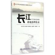 长江中下游分汊河段系统治理技术/长江黄金水道建设关键技术丛书