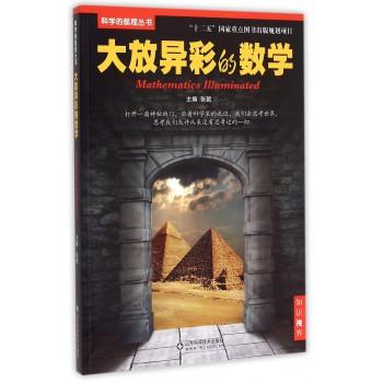 大放异彩的数学/科学的航程丛书