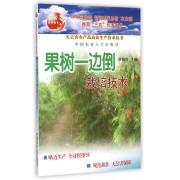 果树一边倒栽培技术/无公害农产品高效生产技术丛书