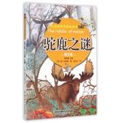 驼鹿之谜(图文版)/比安基经典森林故事