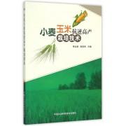小麦玉米抗逆高产栽培技术