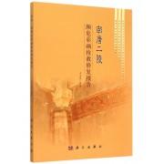 南唐二陵濒危彩画抢救修复报告/历史文化遗产保护科学研究系列丛书
