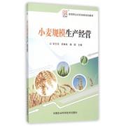 小麦规模生产经营(新型职业农民培育规划教材)