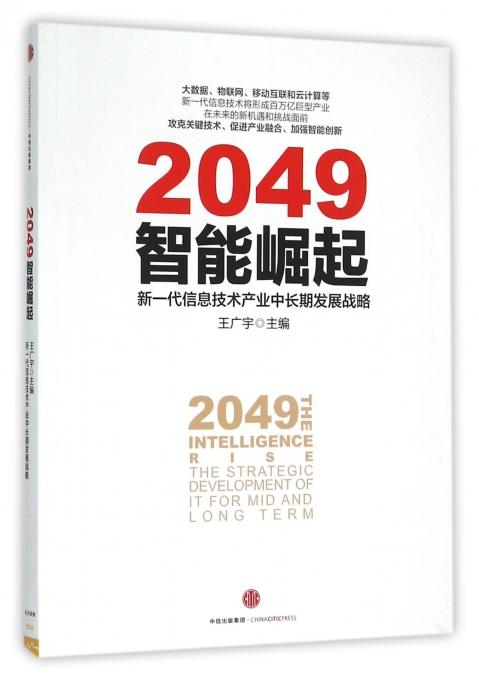2049智能崛起(新一代信息技术产业中长期发展战略)