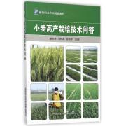 小麦高产栽培技术问答(新型职业农民培育教材)
