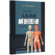 人体系统解剖图谱/医学教学图谱