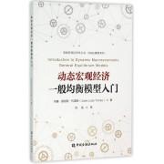 动态宏观经济一般均衡模型入门/DSGE模型系列/高级宏观经济学丛书